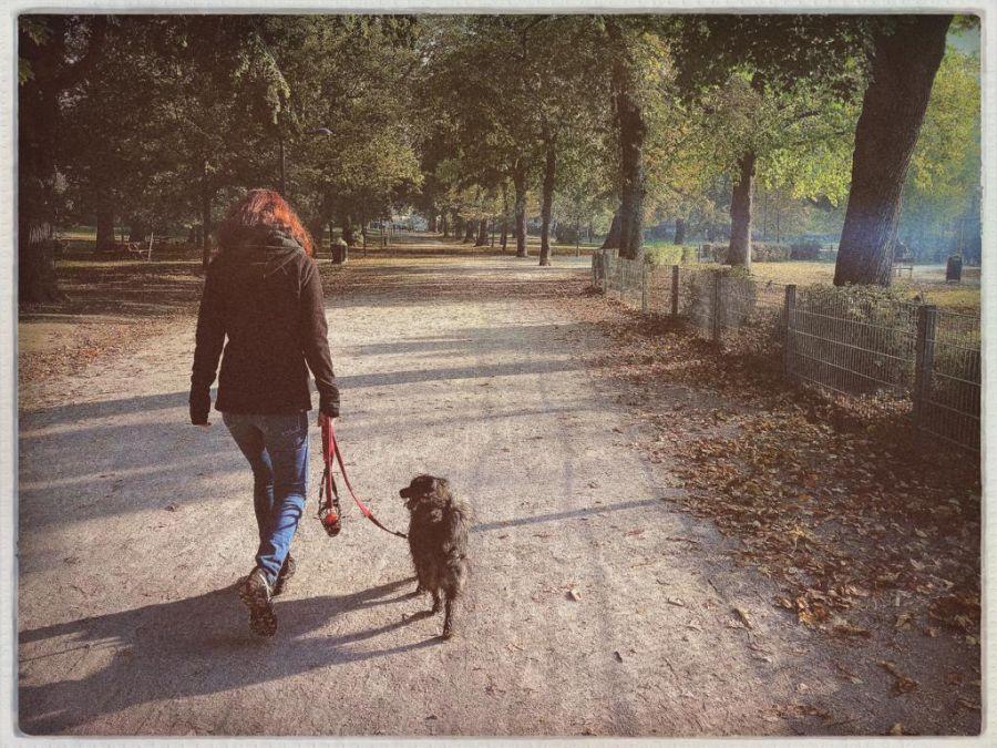 Christine ist am liebsten mit ihrem Hund in Wien zu Fuß unterwegs.