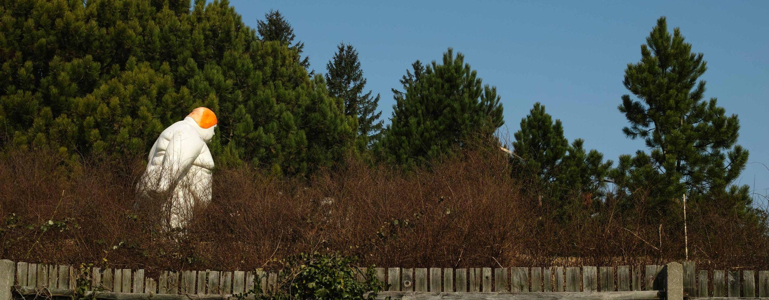 Blick aus dem Dornbacher Friedhof, © Sven Fargo