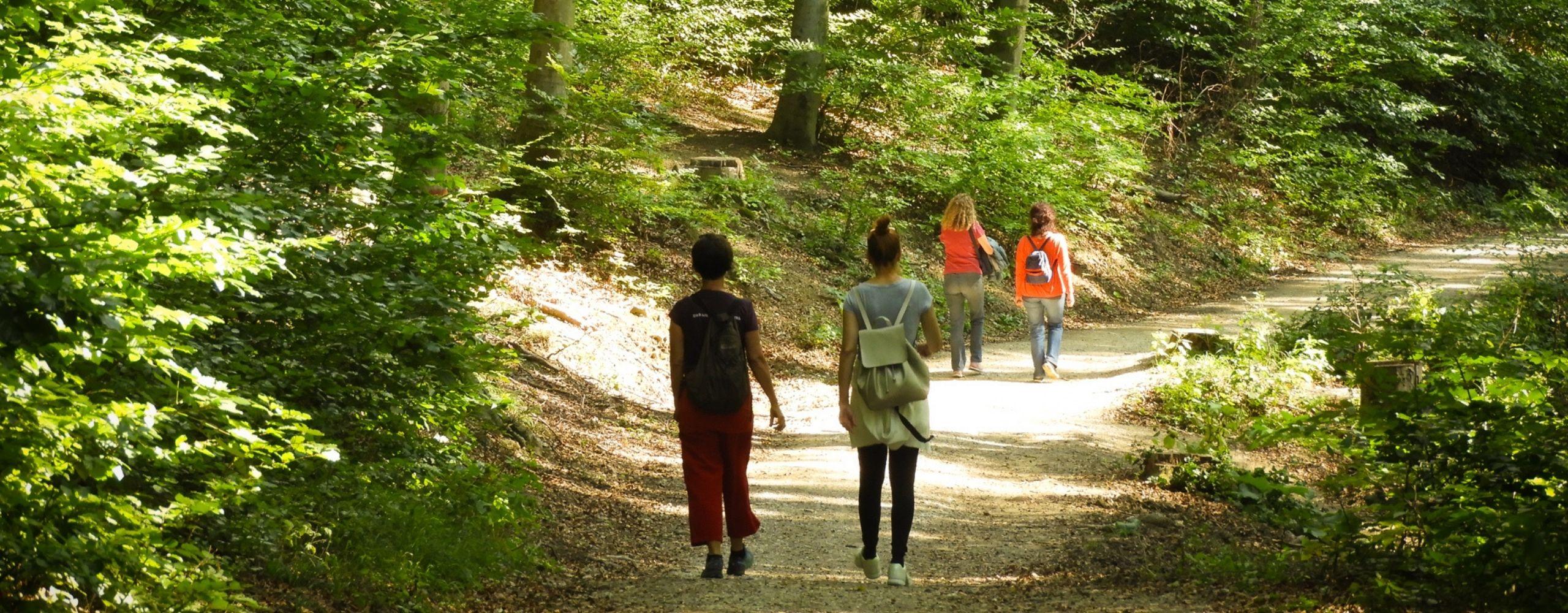 Wandererinnen am Stadtwanderweg (© MA49/Fürthner)